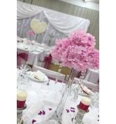 Ružové hortenzie s cyklamenovou